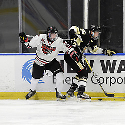 BUFFALO, NY - SEP 21,  2017: Ontario Junior Hockey League Governors Showcase game between the Trenton Golden Hawks and Milton Icehawks, Kevin Shirmaly #8 of the Milton Icehawks battles for the puck with Michael Silveri #88 of the Trenton Golden Hawks during the first period.<br /> (Photo by Andy Corneau / OJHL Images)