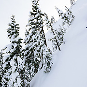 Owen Dudley experiences some major powder in the backcountry of Mount Baker Ski Area.