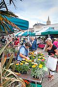 Truro Flower Market 03