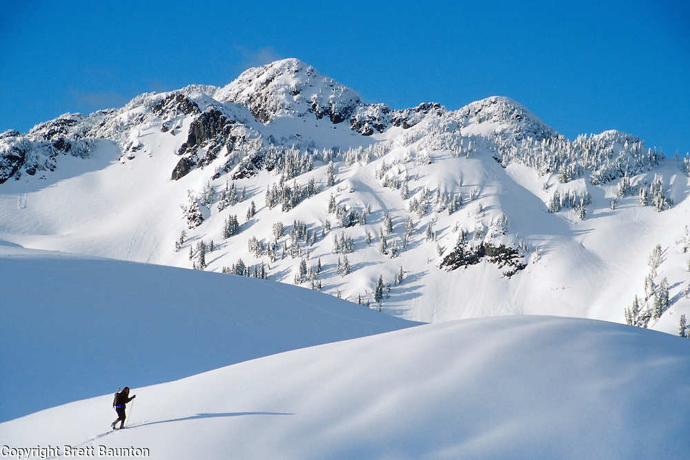 Mt. Baker Wilderness Area, WA USA.Mt. Herman from Table Mt..Winter, Backcountry Cross Country Skiing.Brett Baunton