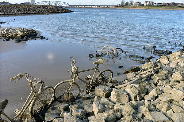 Nederland, Nijmegen, 13-11-2015De waterstand in de rivier de Waal is laag. Woonboten in een rivierarm in de buurt van de stad liggen op het droge of vallen bijna droog. Binnenvaartschepen nemen minder lading, vracht in en moeten goed in de vaargeul blijven. Hierdoor is het drukker op de rivier. Gestolen en gedumpte fietsen komen ook tevoorschijn.Foto: Flip Franssen/Hollandse Hoogte