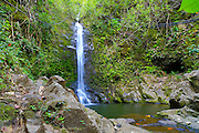 Waterfall, Waipio Valley, Big Island of Hawaii