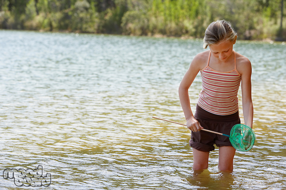 Girl (7-9) standing knee-deep in lake holding fishing net.