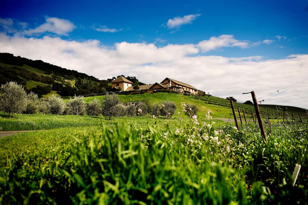 Nicholson Ranch, Sonoma, Ca., on Saturday, Feb. 6, 2010.