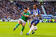 Sheffield Wednesday midfielder Joey Pelupessy (8) clears the ball from Brighton & Hove Albion defender Gaëtan Bong (3) during the The FA Cup match between Brighton and Hove Albion and Sheffield Wednesday at the American Express Community Stadium, Brighton and Hove, England on 4 January 2020.