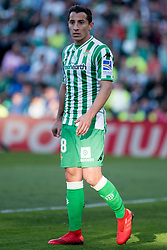 February 3, 2019 - Sevilla, Andalucia, Spain - Guardado of Real Betis during the LaLiga match between Real Betis vs Atletico de Madrid at the Estadio Benito Villamarin in Sevilla, Spain. (Credit Image: © Javier MontañO/Pacific Press via ZUMA Wire)