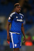 Cardiff City's Sammy Ameobi