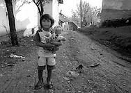 Kosovo - Pejë ,  zona di Mahala e Bates  12 Novembre 2000.   Una bambina di etnia rom