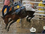 Bareback Rider Jacob Henry Garon on 68 Nickels JK, 28 July 2007, Cheyenne Frontier Days