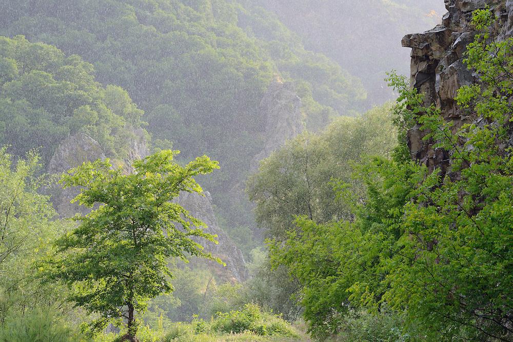 Arda river canyon, Madzharovo, Eastern Rhodope mountains, Bulgaria