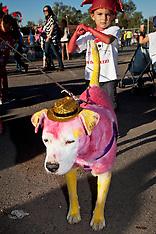 Santa Fe Fiesta 2013 Pet Parade photos