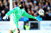 Fotball ,1. april 2013 , Tippeligaen , Eliteserien<br /> Sarpsborg - Viking 2-1<br /> <br /> Duwayne Kerr , Sarpsborg