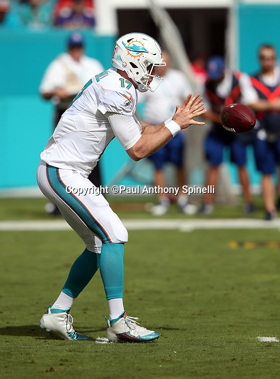 Miami Dolphins quarterback Ryan Tannehill (17) catches a shotgun snap during the 2015 week 13 regular season NFL football game against the Baltimore Ravens on Sunday, Dec. 6, 2015 in Miami Gardens, Fla. The Dolphins won the game 15-13. (©Paul Anthony Spinelli)