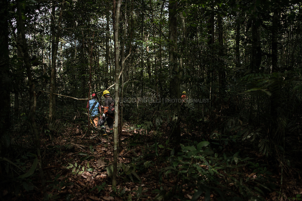 Foreste in Piedi Project for LifeGate and ICEI - Amazonas - Brazil