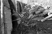 Garoto trabalha em condições de escravidão em carvoaria do Mato Grosso do Sul, MS - 1988..Boy works in slavery conditions in coal pit of Mato Grosso do Sul, MS - 1988