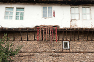 Peppers hanging up to dry outside a traditional house in Kratovo, Macedonia. © Rudolf Abraham