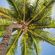Cancun Mexico, Resort, Tulum, 2017