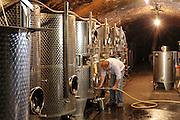 Weinkeller,  Weingut Friedrich Bastian, Bacharach, Oberes Mittelrheintal, Rheinland-Pfalz, Deutschland | wine cellar, winery Friedrich Bastian, Upper Middle Rhine Valley, Rhineland-Palatinate, Germany