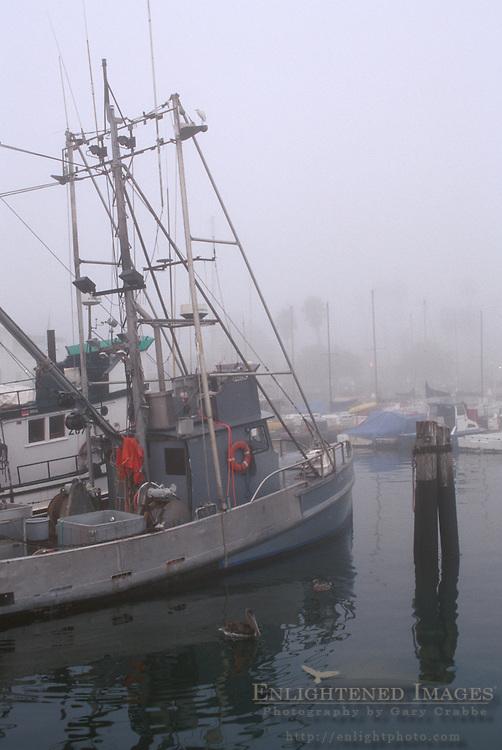 Commercial fishing boats in fog at dock in Santa Barbara Harbor, Santa Barbara, California