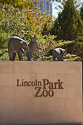 Lincoln Park Zoo Chicago, IL, USA.