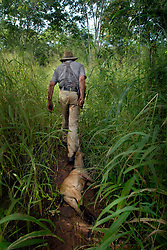"Dairen Simpson, also known as ""Bwana Simba"" or ""Mr. Lion""drags a goat through the bush to attract lions  to his scent for his traps near Simana, Tanzania. Ami Vitale"