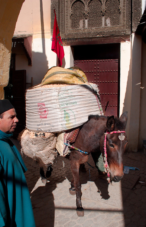 Narrow street in Fes where a loaded mule and a Moroccan man barely have room to pass by each other.