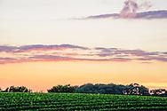 Wolffer Estate Vineyards, Sagaponack, Long Island, New York