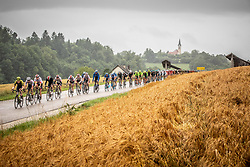 Peloton in Gorenje Praprece during 5th Stage of 26th Tour of Slovenia 2019 cycling race between Trebnje and Novo mesto (167,5 km), on June 23, 2019 in Slovenia. Photo by Vid Ponikvar / Sportida