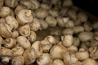 Close-up of button mushrooms in grocery store