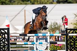 Verlooy Jos, BEL, Varoune<br /> Belgisch Kampioenschap  Lanaken 2019<br /> © Hippo Foto - Dirk Caremans<br />  21/09/2019