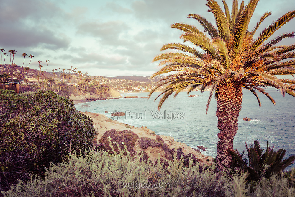 Laguna Beach California retro photo with palm trees, Pacific Ocean, and the Orange County Southern California coastline.