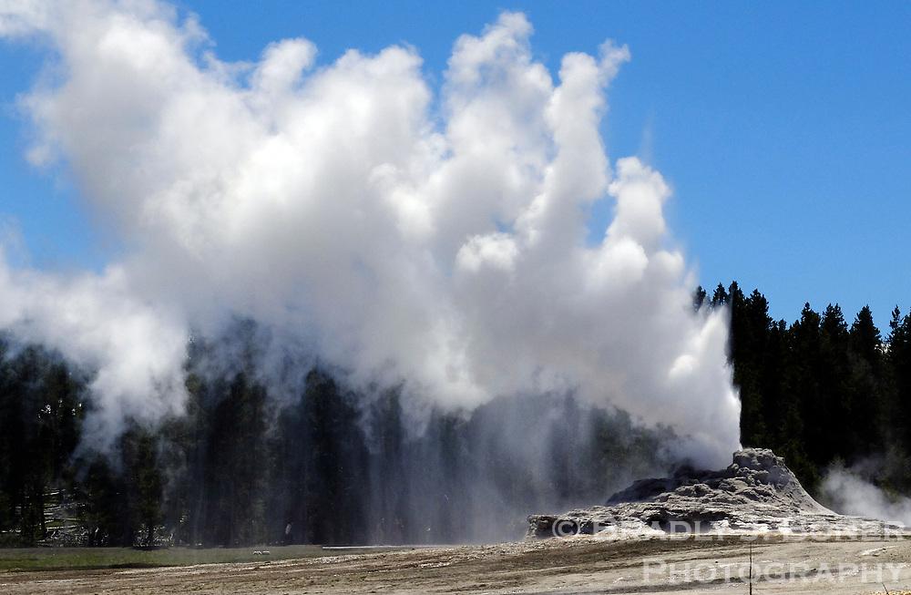 Castle Geyser in eruption, Upper Geyser Basin, Yellowstone National Park, Wyoming