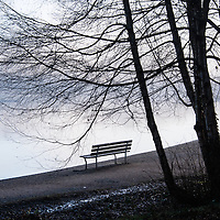 Lonely park benches along a lagoon with reflections and fog.