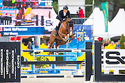 David McPherson - Sirocco<br /> FEI World Breeding Jumping Championships for Young Horses 2016<br /> © DigiShots