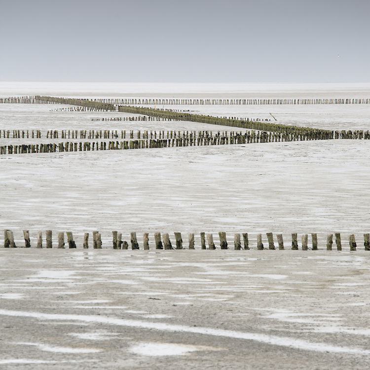 Poles on the mudflats of the Waddenzee near the ferry dam of Holwerd // Paaltjes op het wad bij de veerdam van Holwerd.
