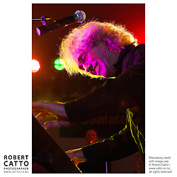 Singer / songwriter Wayne Mason performs at Summer City, Botanic Garden Soundshell, Wellington New Zealand.