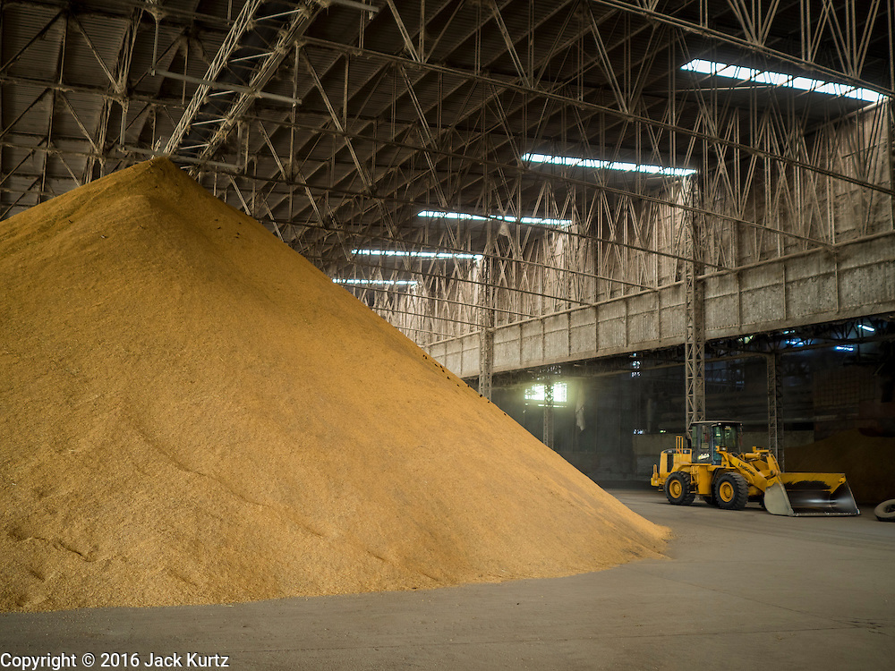 "23 NOVEMBER 2016 - AYUTTHAYA, THAILAND: A rice warehouse in Ayutthaya province, north of Bangkok. Rice prices in Thailand hit a 13-month low early this month. The low prices are hurting farmers. Rice exports account for around 10 percent of Thailand's gross domestic product, and low prices frequently lead to discontent in the rural areas of Thailand. The military government has responded by sending soldiers to rice mills, to ""encourage"" mill owners to pay farmers higher prices. The Thai army and navy are also buying for their kitchens directly from farmers in an effort to get more money into farmers' hands.  PHOTO BY JACK KURTZ"