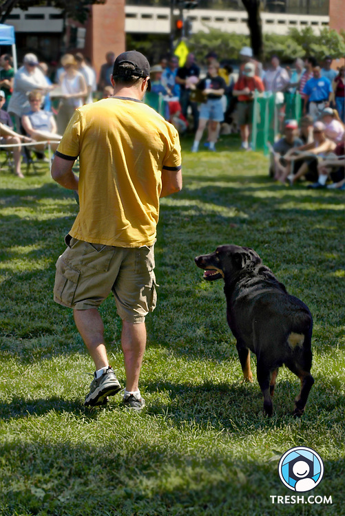 Photos from PETS DC's annual Pride of Pets Fun Dog Show, held Saturday, June 18, 2005, in Dupont Circle, Washington, D.C. All proceeds from the show support the programs of PETS-DC. PETS-DC enables people living with HIV/AIDS to maintain and care for their pets. This image: Image content has not been altered, but the image has been digitally enhanced beyond traditional darkroom techniques for artistic effect.