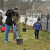 Applegate Tree Planting 03 02 13