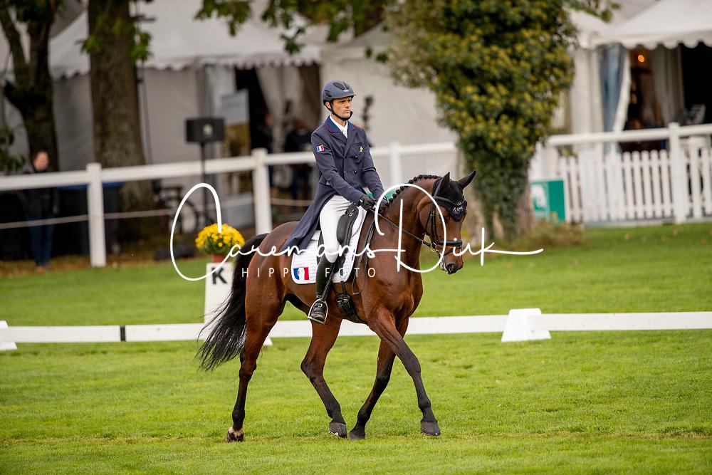 Touzaint Nicolas, FRA, Demoiselle Platine HDC<br /> Mondial du Lion - Le Lion d'Angers 2019<br /> © Hippo Foto - Dirk Caremans<br />  17/10/2019