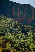 Nova Lima_MG, Brasil...Estacao Ecologica Mata dos Fechos...The Ecological Station Mata dos Fechos...Foto: JOAO MARCOS ROSA / NITRO...