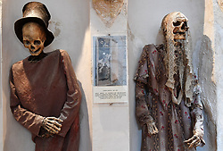 """NO WEB FOR FRANCE - In the crypt of the Capuchin Church of Burgio, a magnificent village situated 100 kilometres south of Palermo,Sicily, Italy on January 2019 the dead are perfectly staged. In all, there are around 50 mummies, most in the upright position, all elegantly dressed. The women wear splendid lace dresses, a little faded, and the men their best hat. Almost all of these mummies date to the 18th and 19th centuries. The most recent were added at the beginning of the 20th century. In the shadows, illuminated with a small bright torch, Luisa Maria Lo Gerfo examines the skull of an elegant bourgeois deceased 150 years ago. Anthropologist, biologist, archaeologist and Sicilian mummy specialist, she regularly works on mummies whether they are in an upright position or elongated in richly decorated open coffins. She measures limbs, diagnoses diseases according to abnormalities and scars, inspects dresses, mantillas, costumes, top hats and scarves. """"Not everyone could afford to be mummified"""", she explains. """"The more one was part of high society, the closer one was to the altar, the heart of the church. The poorest were buried outside the church."""" Sicily will reveal over time a real research laboratory on mummification. It is spreading throughout the island and there is not an important village in sight that does not display the bodies of their priests, monks or citizens in the crypt of their church. Photo by Eric Vandeville/ABACAPRESS.COM"""
