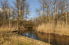 Kortenhoefse plassen en polder, Natuurmonumenten, Wijdemeren, Netherlands