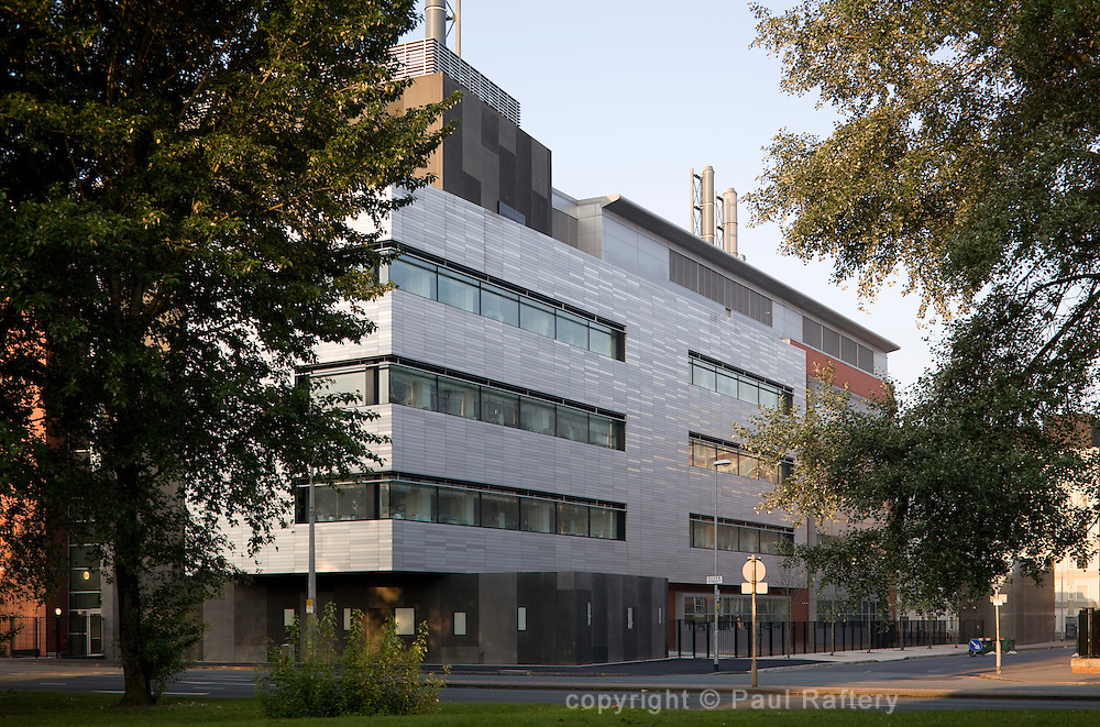 Medical research faculty
