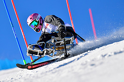 STEPHENS Laurie, LW12-1, USA, Slalom at the WPAS_2019 Alpine Skiing World Cup, La Molina, Spain