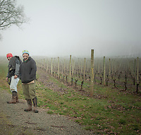 Farm workers at Stoller Vineyards in Dayton, Oregon.
