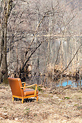Vintage armchair in an autumn forest, scene