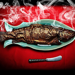 Kyle Green | The Roanoke Times<br /> 1/28/2012 ***Illustration. Smoked Trout for a story by Linsey Nair about smoking meats such as fish, jerky, chicken. ***Illustration