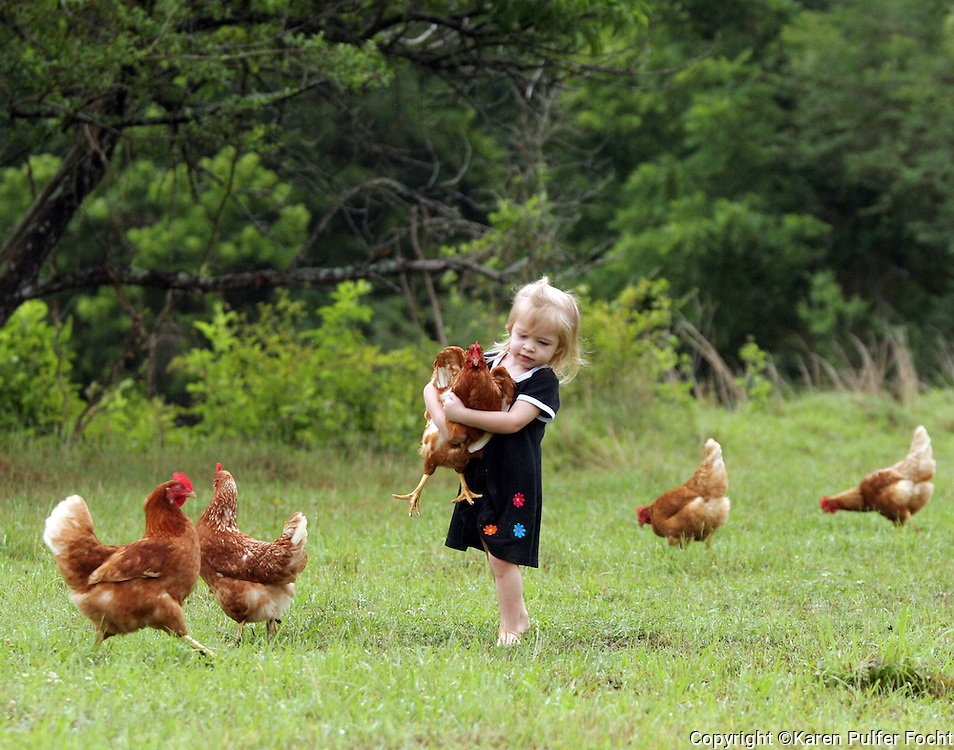 A young girl plays with chickens on her Ponotoc, Mississippi farm.