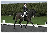 Affiliated British Dressage. Sheepgate E.C. Sat 12-12-2009.